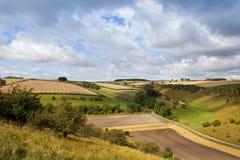 Agricoltura scenica Immagini Stock Libere da Diritti