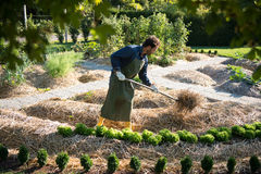 Agricoltura sinergica Fotografia Stock Libera da Diritti