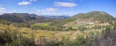 Agricoltura sostenibile di olivo al geopark di Villuercas, Caceres, Fotografie Stock Libere da Diritti