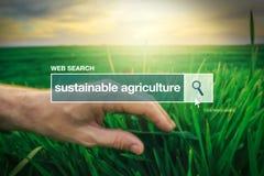 Agricoltura sostenibile - termine del glossario della barra di ricerca di web Fotografia Stock
