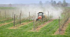 Agricoltura, spruzzatura degli alberi Immagine Stock Libera da Diritti