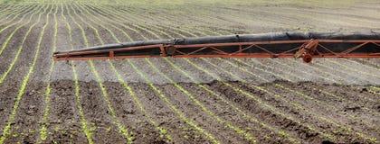 Agricoltura, spruzzatura del campo Immagine Stock Libera da Diritti