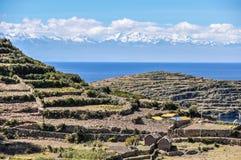 Agricoltura su Isla del Sol sul Titicaca in Bolivia Fotografie Stock