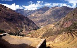 Agricoltura sul terrazzo nelle Ande al Perù Fotografia Stock