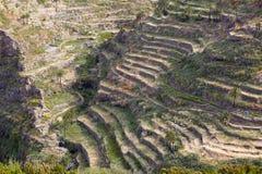 Agricoltura sull'isola di Gomera, Spagna Fotografie Stock