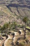 Agricoltura sull'isola di Gomera, Spagna Fotografia Stock