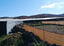 Agricoltura sull'isola Fuerteventura in Spagna Fotografia Stock