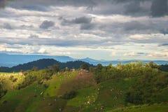 Agricoltura sulla montagna Fotografie Stock Libere da Diritti