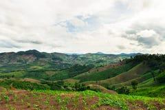 Agricoltura sulla montagna Immagini Stock