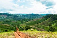 Agricoltura sulla montagna Fotografia Stock Libera da Diritti