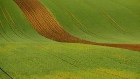Agricoltura sulla Moravia Rolling Hills con i filds ed il trattore del grano Fotografie Stock