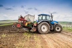 Agricoltura sulle colline rumene della vigna Immagini Stock Libere da Diritti