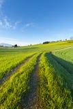Agricoltura in Svizzera Fotografia Stock Libera da Diritti