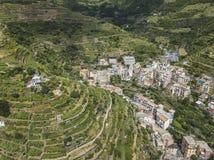 Agricoltura a terrazze Città di Manarola Cinca Terre L'Italia Immagini Stock Libere da Diritti