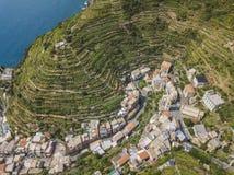 Agricoltura a terrazze Città di Manarola Cinca Terre L'Italia Fotografia Stock Libera da Diritti