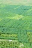 Agricoltura tradizionale Immagini Stock Libere da Diritti