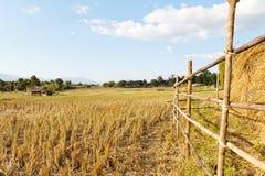 Agricoltura tradizionale Fotografie Stock Libere da Diritti