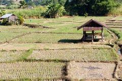Agricoltura tradizionale Fotografia Stock Libera da Diritti