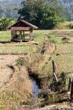 Agricoltura tradizionale Immagini Stock