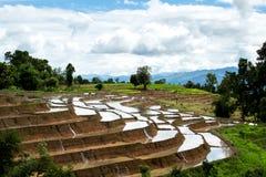 Agricoltura tradizionale nel MAI di Cheing, Tailandia del Nord Fotografia Stock