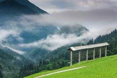 Agricoltura tradizionale, rastrelliera per il fieno in montagne della Slovenia al giorno nebbioso Immagini Stock