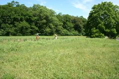 Agricoltura tradizionale in un parco storico tematico Fotografie Stock