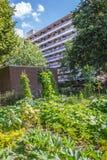 Agricoltura urbana: un orto accanto ad un buildi dell'appartamento Immagini Stock
