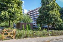Agricoltura urbana: un orto accanto ad un buildi dell'appartamento Fotografie Stock Libere da Diritti