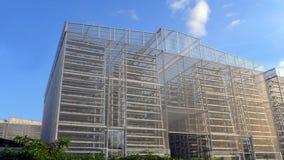Agricoltura verticale, larga scala Fotografia Stock Libera da Diritti