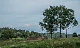 Agricoltura, vista del paesaggio immagine stock libera da diritti