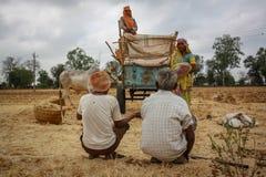 Agricoltura Worksers dell'India Immagini Stock Libere da Diritti