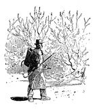 Agricolture engraving - farmer sprays Bordeaux mixture in orchard Stock Images