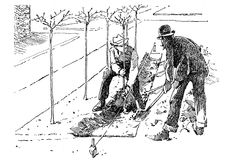 Agricolture engraving - planting trees in soil tracks Royalty Free Stock Photo