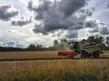 Agricolture pracownik Fotografia Stock