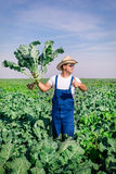 Agriculteur à l'usine de brocoli Photo stock