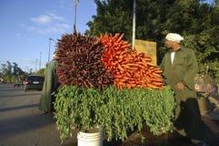 Agriculteur égyptien Selling Carrots Beside la route, le Caire, Egypte dessus Photos stock
