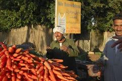 Agriculteur égyptien Selling Carrots Beside la route, le Caire, Egypte dessus Images libres de droits