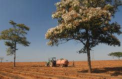 Agriculteur image stock