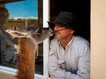 Agriculteur argentin (gaucho, cowboy argentin) et son lama dessus Image stock