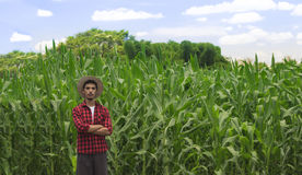 Agriculteur avec le chapeau au champ de plantation de maïs Photographie stock libre de droits