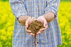 Agriculteur Checking Soil Quality de terre agricole fertile de ferme Photo stock