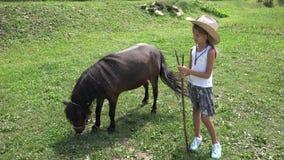 Agriculteur Child Looking Pony Horse de pâturage, cowboy Girl Playing, pâturant 4K banque de vidéos