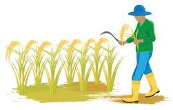 Agriculteur dans la rizière illustration libre de droits
