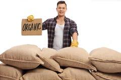 Agriculteur derrière la pile des sacs et du signe qui indique organique Photo stock