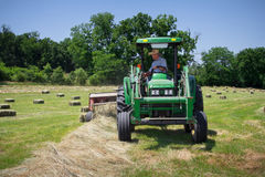 Agriculteur Haying Field Image stock