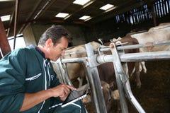 Agriculteur moderne à l'aide du comprimé dans la grange Images libres de droits