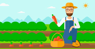 Agriculteur rassemblant des carottes illustration stock