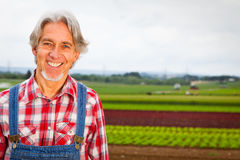 Agriculteur Standing In Front Of His Field image stock