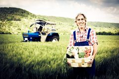 Agriculteur Standing In un champ photo stock