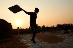 Agriculteur travaillant dans un domaine de riz dans le coucher du soleil Images stock